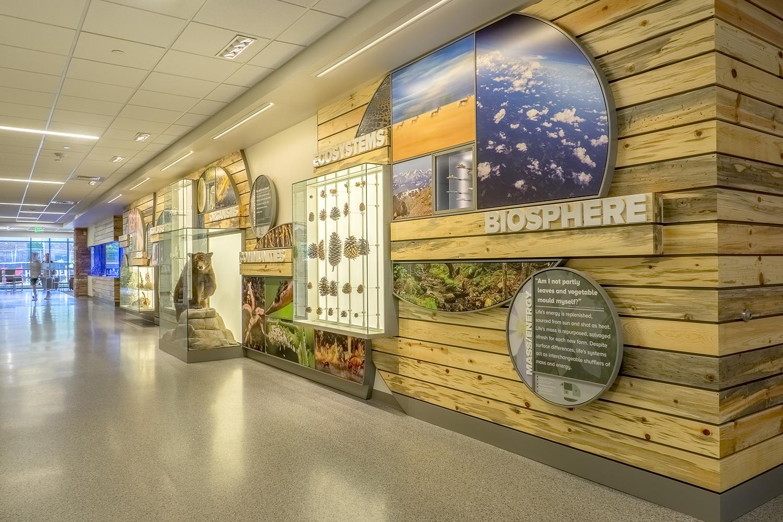 Colorado State University   Ecosystem Exhibit   Fort Collins, CO