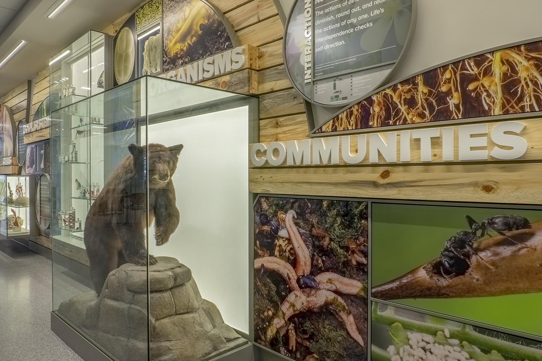 Colorado State University   Communities Exhibit Details   Fort Collins, CO