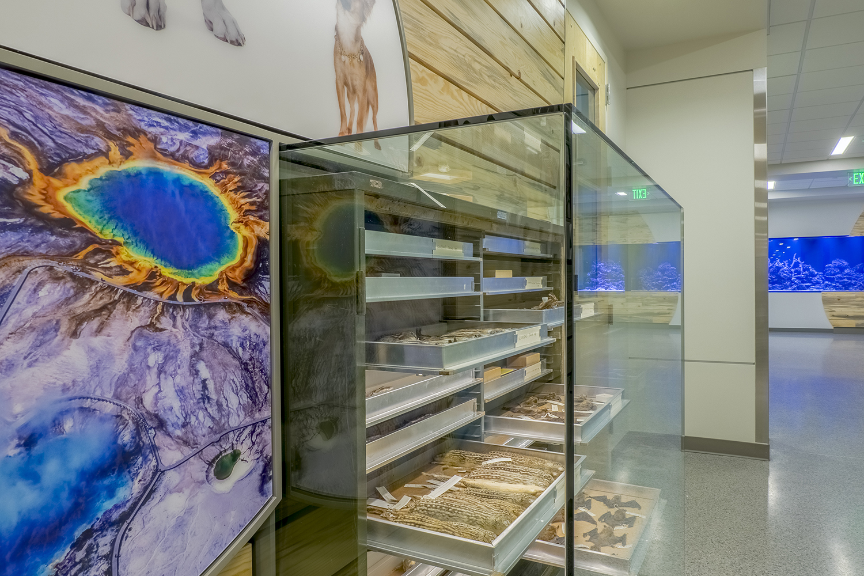 Colorado State University   Diversity Exhibit Details   Fort Collins, CO